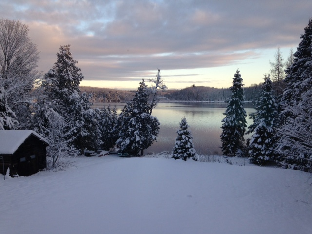 Snowy trees with an unfrozen lake