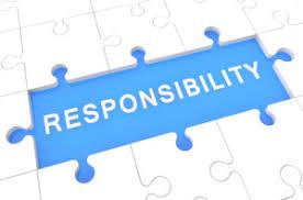 Responsibility puzzle