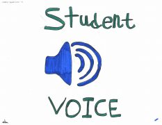 Grade 6 students in Mrs. Frederick's class at Vincent Massey PS create Student Voice Logos 4